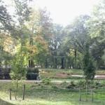 2012-10-02 09.33.21 (Kopiowanie)